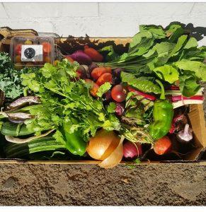 Gung Hoe Growers vegie box